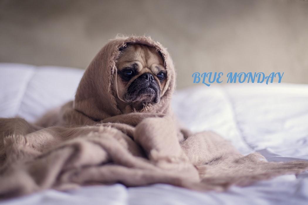 Qu'est-ce que le Blue Monday ?
